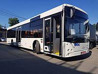 Новый пригородный автобус МАЗ 203 169, фото 1