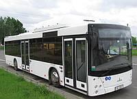 Новый пригородный автобус МАЗ 203 С65 с газовым двигателем, фото 1