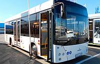 Новый автобус МАЗ 206 063, фото 1