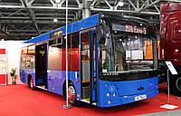 Новый автобус МАЗ 206 069, фото 1