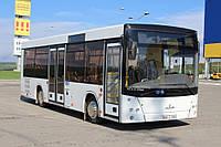 Новый автобус МАЗ 206 086, фото 1