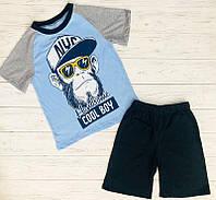 Комплект для мальчика футболка шорты  оптом