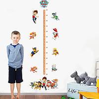3D интерьерные виниловые наклейки на стены Ростомер Детский Щенячий Патруль 70-50 см в детскую . Декор, Обои