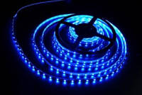 Лента светодиодная  синяя S3528-60B(W)