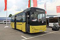 Новый междугородний автобус МАЗ 232 062, фото 1