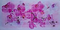 Пластикова листова стінова панель ПВХ Грейс Grace Орхідея 0,2мм 955*480мм