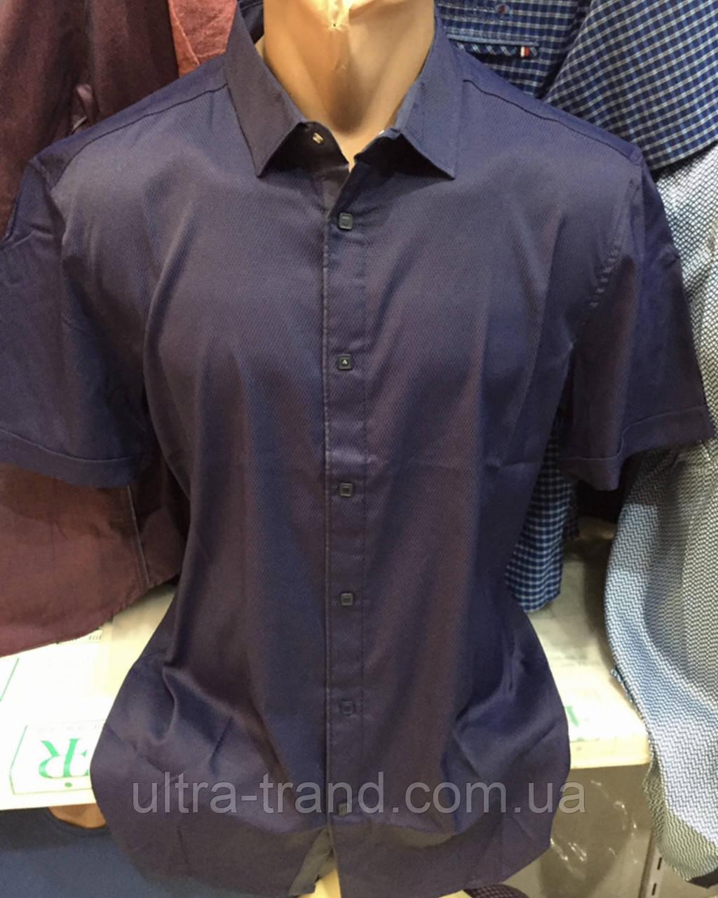 Стильные качественные однотонные турецкие мужские рубашки сорочки Amato