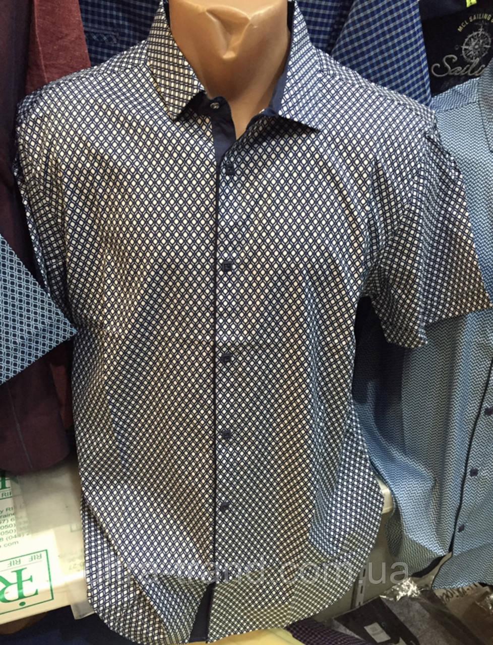 Стильные турецкие мужские рубашки Amato