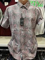 Молодежные хлопковые турецкие мужские рубашки сорочки, фото 1