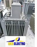 РЗДПОМ-300/6У1 - Реактор масляный заземляющий дугогасящий с плавным регулированием индуктивности., фото 2