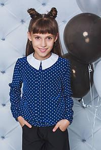 Блуза школьная с длинным рукавом горох синяя