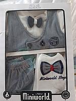Подарочный набор на выписку для новорожденного  мальчика Miniworld