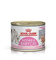 Royal Canin mother and babycat Intensive влажный корм для котят с рождения до 4 месяцев 0,195КГ