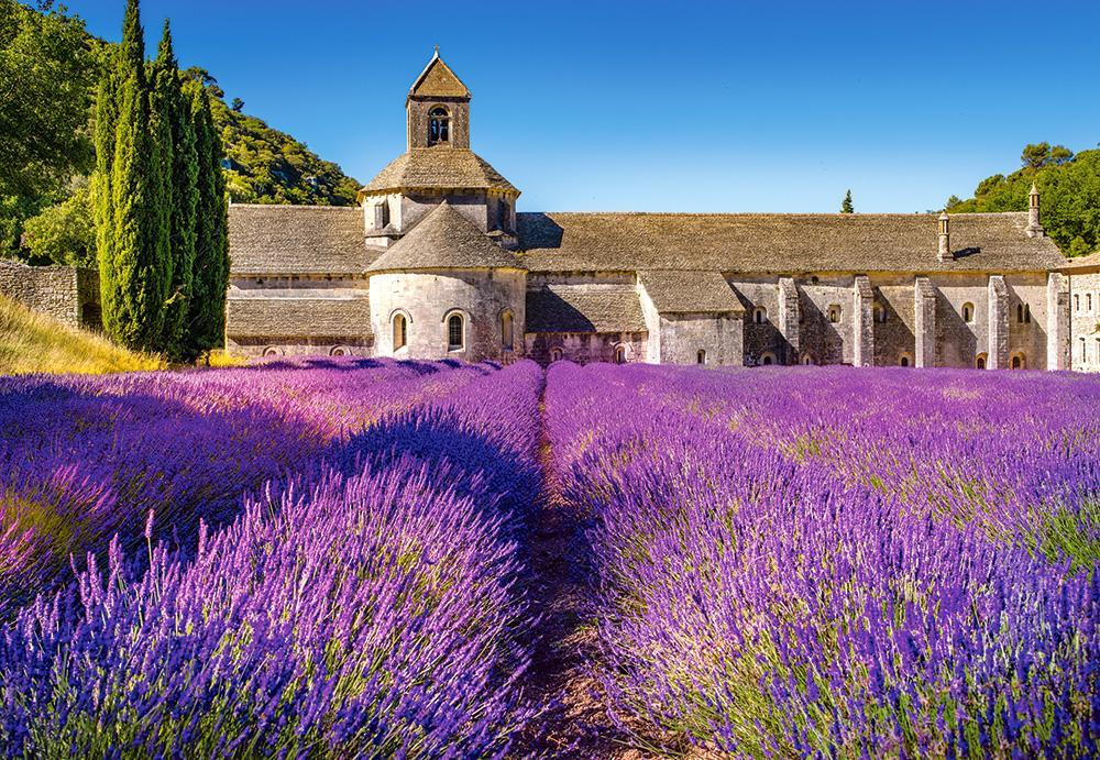 Пазлы Лавандовое поле в Провансе, Франция, 1000 эл.