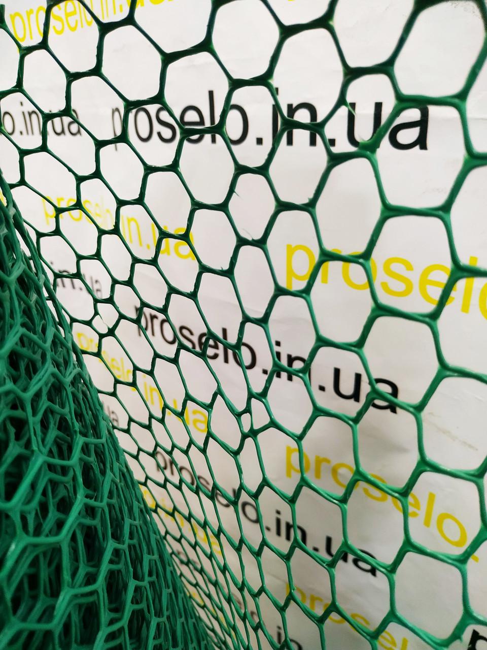 """Сетка садовая, пластиковая, ячейка """"Ромб"""" 20х20мм, 0,5х30м"""