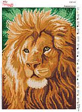 Вышивка бисером Львиный взгляд №14