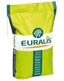 Озимый рапс ЕС Гидромель Euralis, фото 2