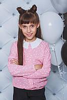 Блуза на дівчинку  в горох ,2 кольори .Р-ри 122-152, фото 1
