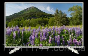 Телевизор Sony 49XF7077 Гарантия!