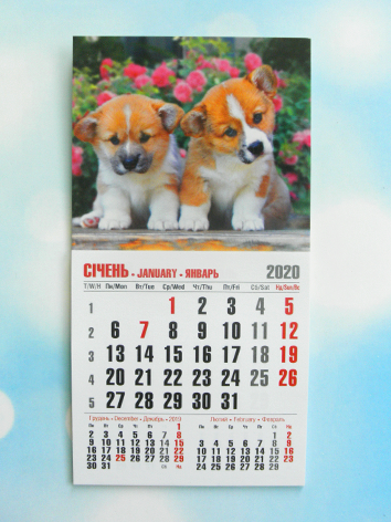 """Календарик магнитный отрывной сувенирный на 2020 г.  """"Щенки"""""""