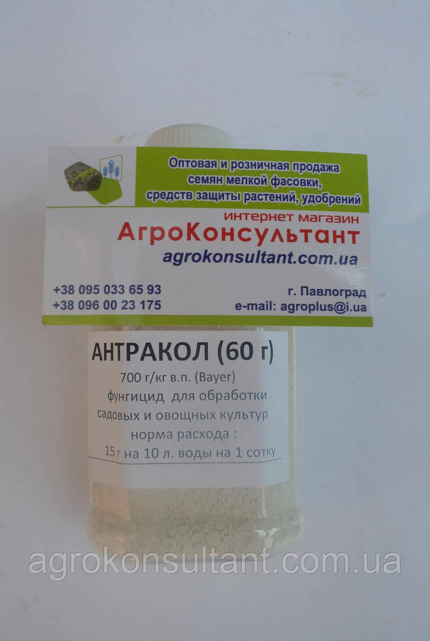 Фунгицид контактный Антракол (60 г) — защита от фитофторы, альтернариоза.