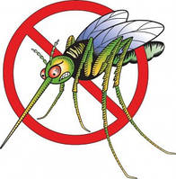 Борьба с комарами, дезинсекция, возможно только экологическими средствами