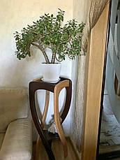 """Підставка під квіти з натурального дерева """"Адель"""", фото 3"""