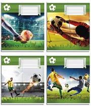 Набор тетрадей 10 штук Полиграфист Футбол A5 в косую линию 12 листов (12С 463)