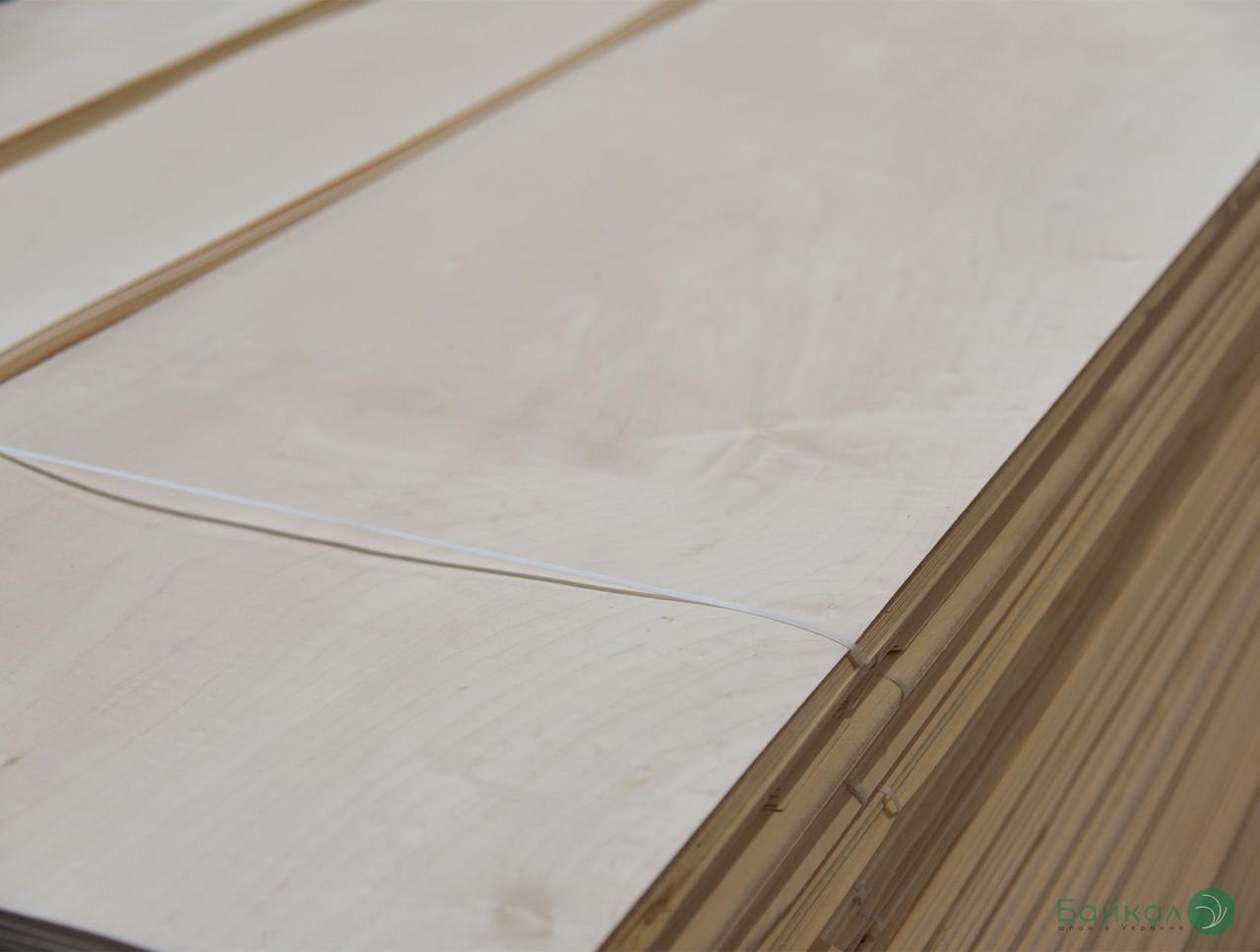 Шпон Клену (Україна) - 0,6 мм - довжина від 2,10 - 3,80 м / ширина від 12 см+  (I гатунок)