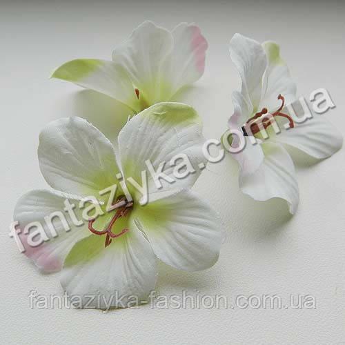 Гортензия декоративная бело-салатовая, головка 55мм