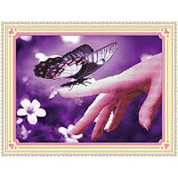 """""""Доверчивая бабочка. Honey Home """" Набор для рисования камнями"""