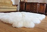 Килим з 12-ти білих овечих шкур, 2.0*3.2, фото 2