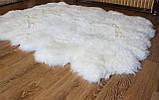 Килим з 12-ти білих овечих шкур, 2.0*3.2, фото 3