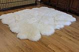 Килим з 12-ти білих овечих шкур, 2.0*3.2, фото 5