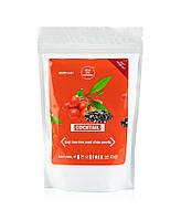 Протеиновый коктейль с ягодами годжи и семенами чиа  200 г Новая жизнь