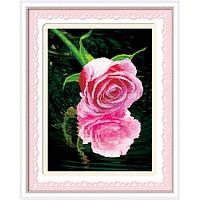 """""""Тени на воде. Розовая роза. """" Набор для рисования камнями"""