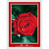 """Красная роза"" Набор для рисования камнями"