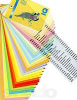 Цветная бумага IQ Color A4-A3, плотность 80-160 г/м2 (500-250 листов пачка)