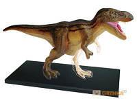 Объемная анатомическая модель 'Динозавр Тираннозавр' (24708)
