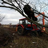 Демонстрация оборудования для обрезки деревьев, лесополос и корчевание поросших территорий.