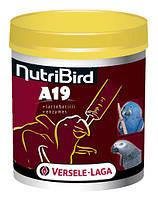 NutriBird A19 корм для ручного вскармливания птенцов крупных попугаев (for baby-birds)