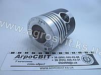 Поршень Д-21 (1 маслосъемное), кат. № Д21-1004021