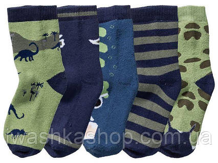 Махровые носки с динозаврами для мальчика, р. 19 - 22 на 1 - 2 года, Lupilu / Lidl