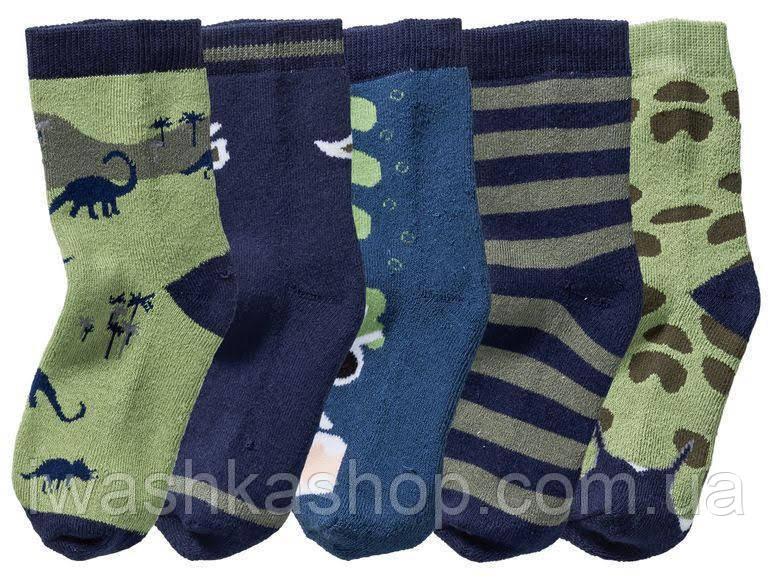 Теплые махровые носки с динозаврами для мальчика, р. 27 - 30 на 4 - 6 лет, Lupilu / Lidl
