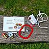 """Автоклав электрический с нержавеющей стали бытовой для консервирования с подставкой под банки """"Люкс-14"""" 2кВт, фото 5"""