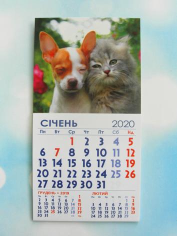 """Календарь магнитный отрывной сувенирный на 2020 г.  """"Котенок и щенок"""""""