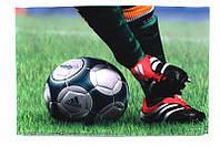 Наклейка на ноутбук maxxtro 2001 football