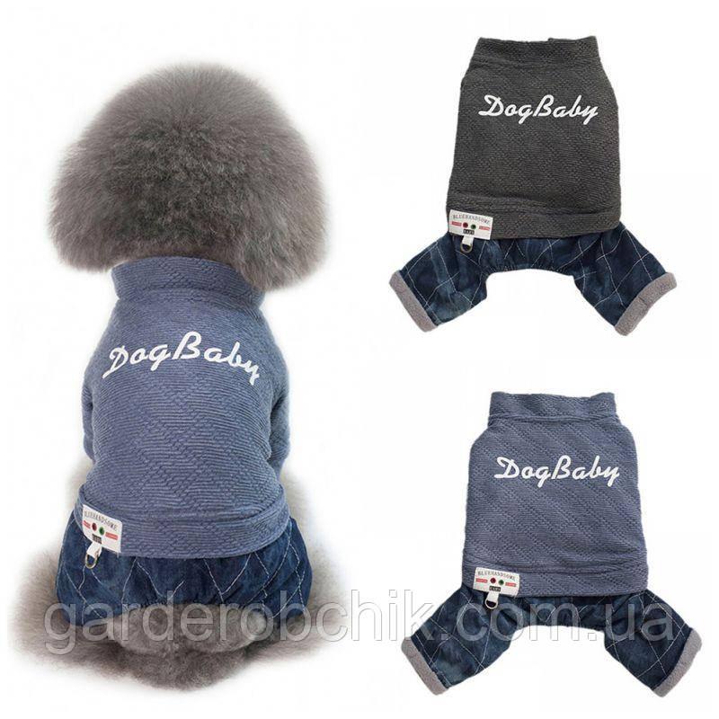 """Комбинезон, костюм джинсовый  """"ДЖИНС STYLE"""" для собаки, кошки. Одежда для животных"""