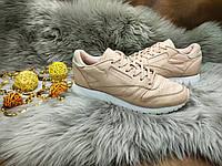 Женские кроссовки Reebok Classic Leather (38 размер) бу