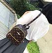 Маленький женский рюкзак louis vuitton, фото 4